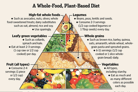 Image result for plant based diet