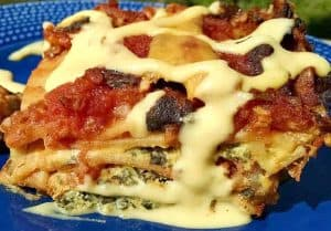Lasagna spinach black bean