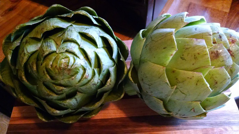 how to cook and eat artichokes. after removing barbs