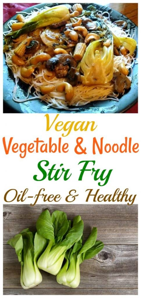 Vegan vegetable noodle stir fry