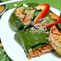 Collard Green Veggie Wraps with Creamy Peanut Sauce