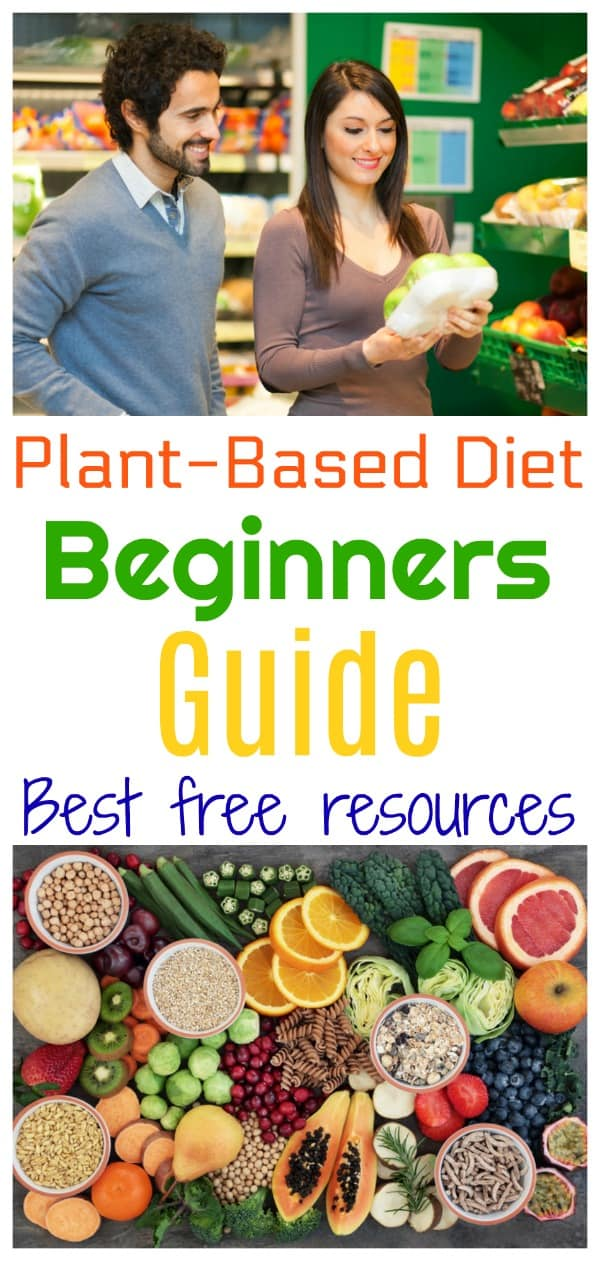 plant based diet beginners guide