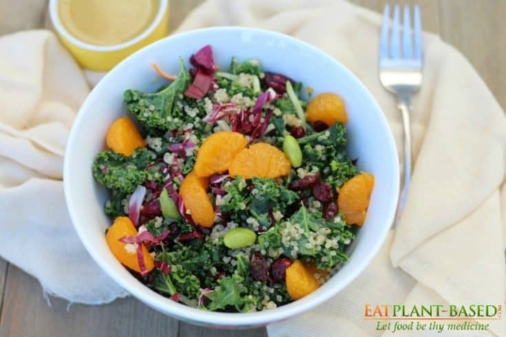Kale Quinoa Salad with Orange Miso Dressing