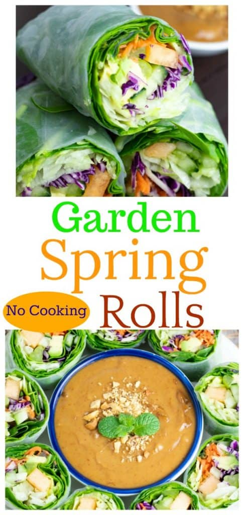 garden spring rolls photo collage for pinterest