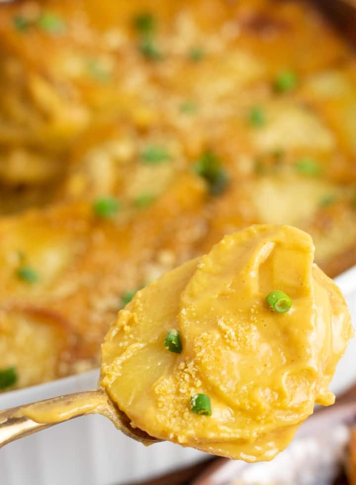 spoonful of creamy scalloped potatoes on gold spoon