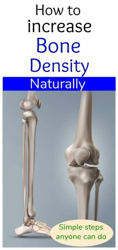 bone density photo of leg bones for pinterest