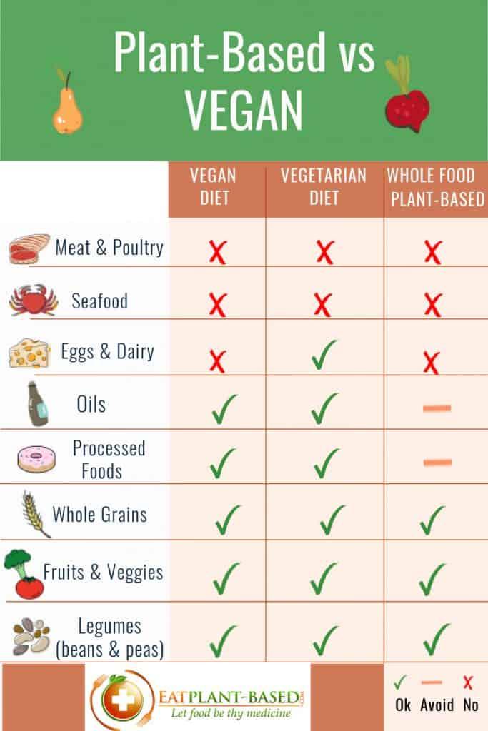 plant based vs vegan vs vegetarian infographic