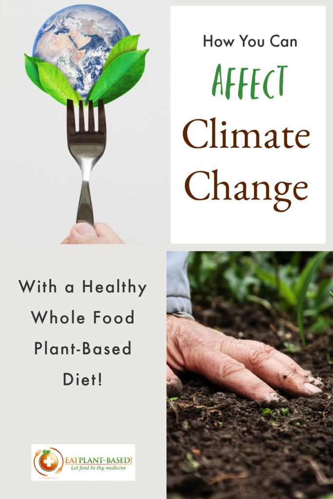 climate change and diet photo collage for pinterest