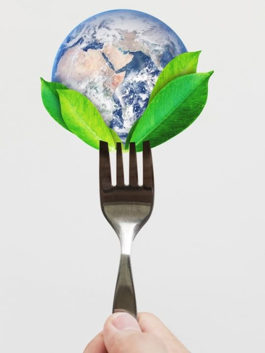 Earth and plants on a fork
