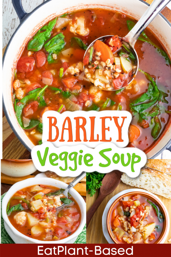 photo collage for barley vegetable soup for pinterest